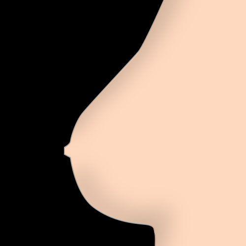 stevige borsten